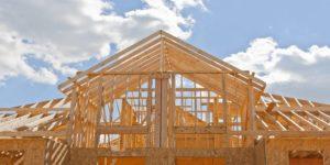 Строительство каркасных домов в Тюмени хэдер